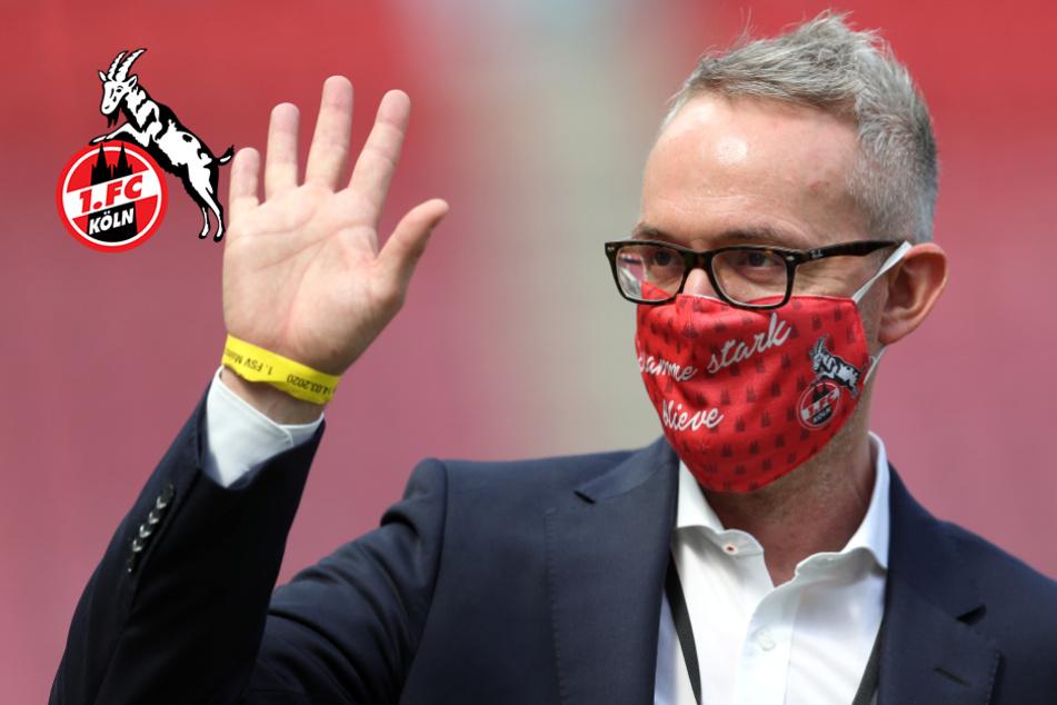 """Kölns Geschäftsführer Wehrle freut sich auf Fans im Stadion: """"Sehr positives Signal"""""""