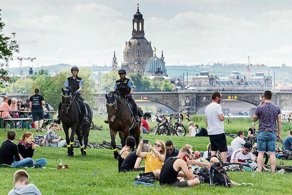 Ordnungshüter hoch zu Pferde - die Polizei verstärkt am Donnerstag ihre Präsenz im Grünen.