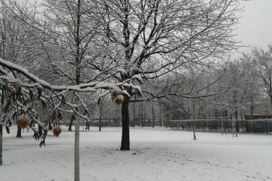 Auch Leipzig lag am Samstagmorgen unter einer dünnen Schneedecke.