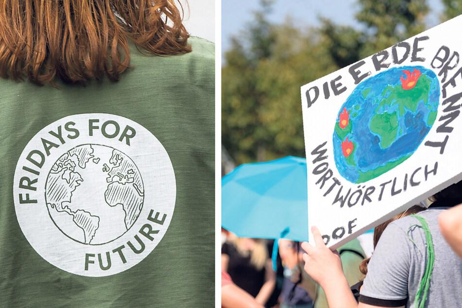 Seit Jahren wird in Dresden für mehr Klimaschutz demonstriert, jetzt könnte ein Beirat für Natur- und Klimaschutz gebildet werden.