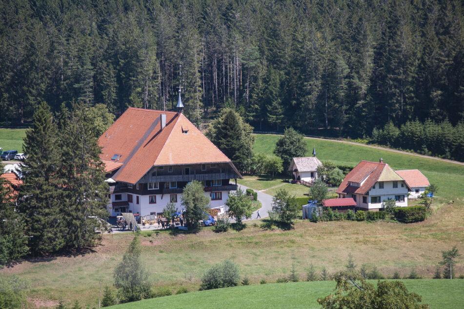 Auf dem Hof im Schwarzwald spielt die Serie. Schell werde nicht umbesetzt. Was genau die Pläne sind, wird noch nicht verraten.
