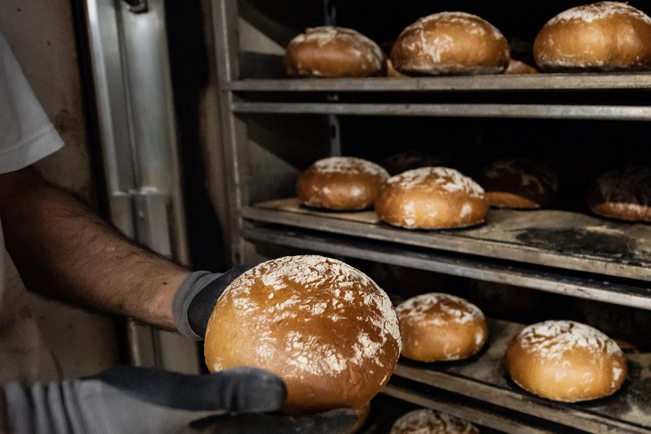 Den Bäckereien in Baden-Württemberg droht ein Fachkräftemangel. Grund sind fehlende Azubis. (Symbolbild)