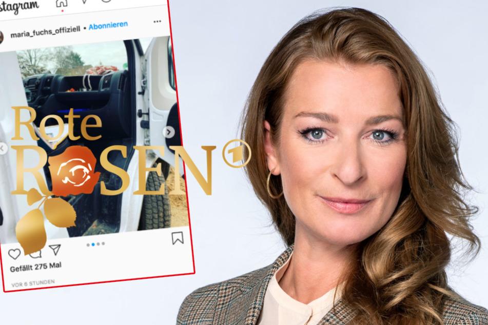 """""""Rote Rosen"""": Maria Fuchs entdeckt ungewöhnlichen Besuch am Set"""