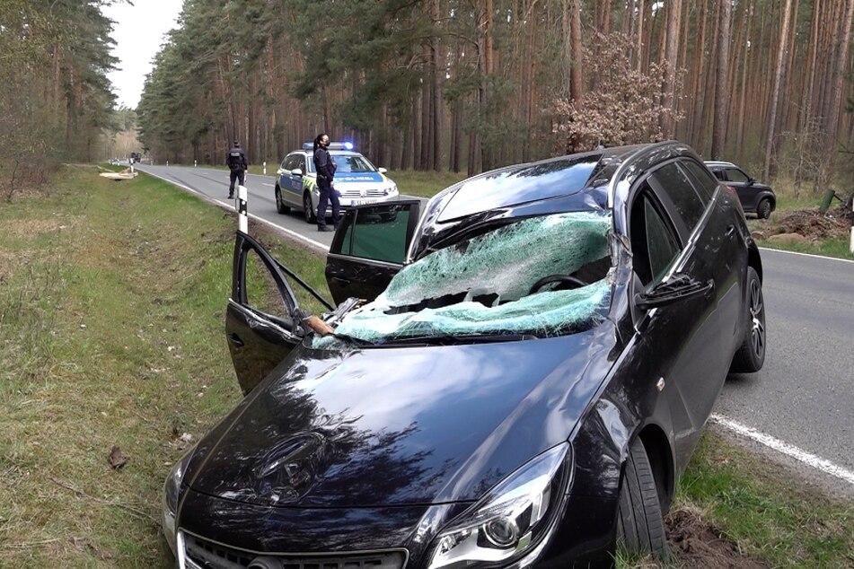 Ein Baum krachte am Freitag plötzlich auf ein fahrendes Auto.