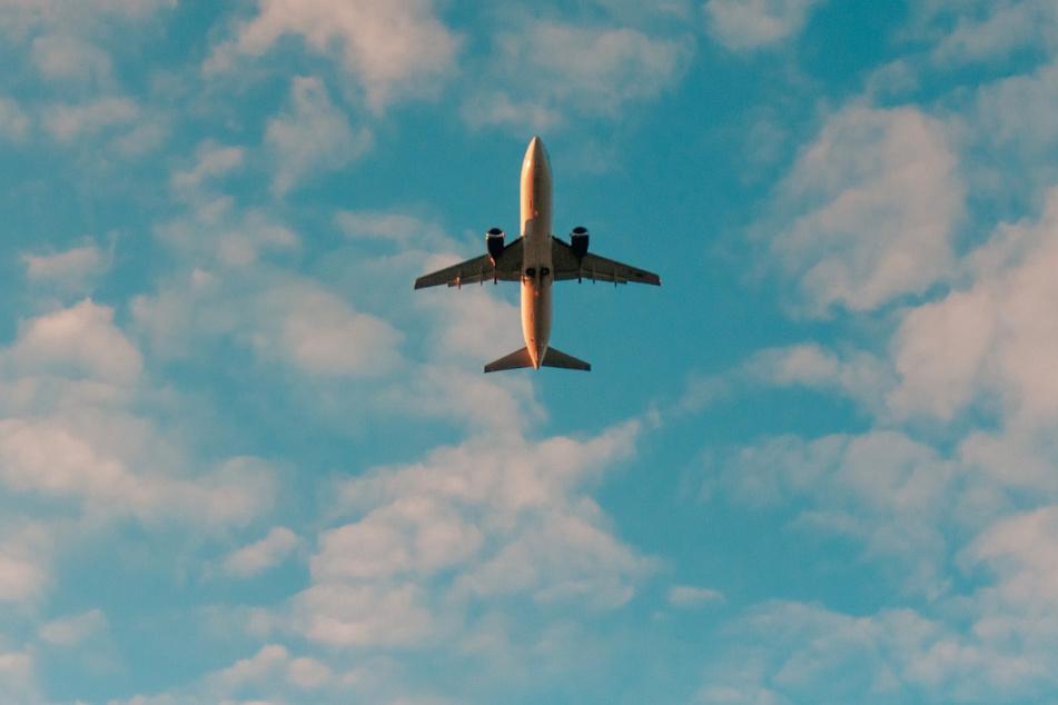 Am Himmel über Hamburg sind wieder mehr Flugzeuge unterwegs. (Symbolbild)