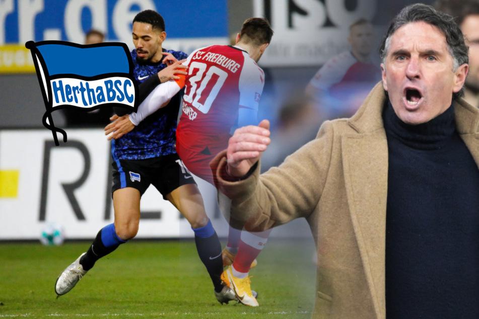 """Hertha wieder in der Krise, Labbadia rechnet mit Cunha ab: """"Unterirdisch"""""""