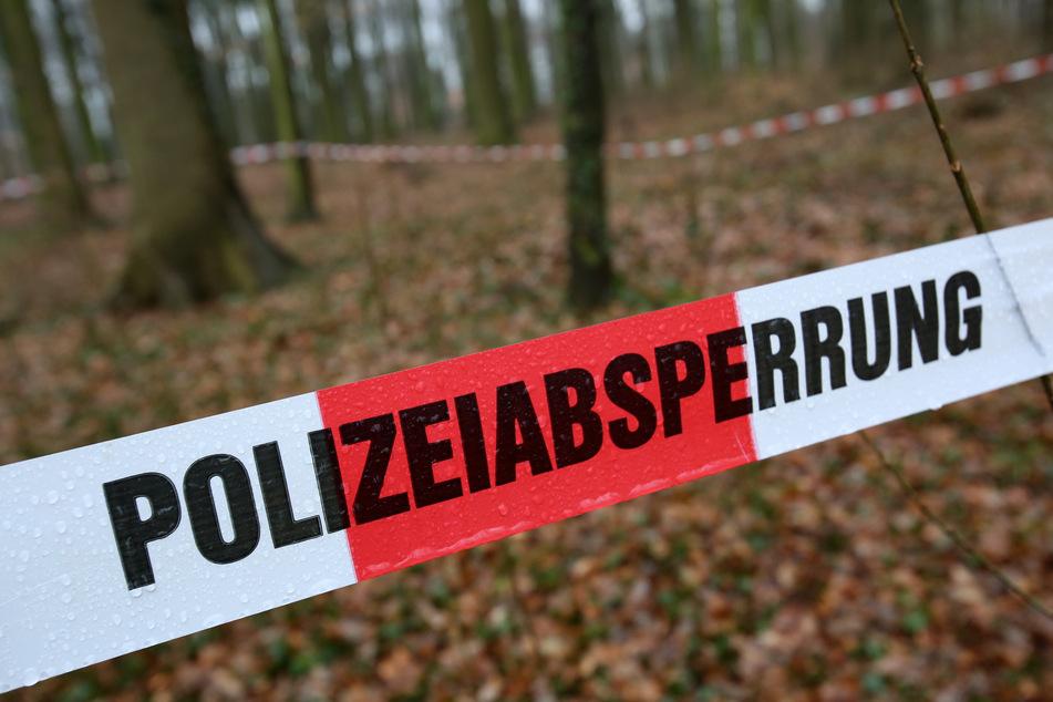 Ein Rentner (79) verschwand am Wochenende aus seiner Wohnung in Lauter-Bernsbach. Er wurde leblos in einem Wald gefunden (Symbolbild).