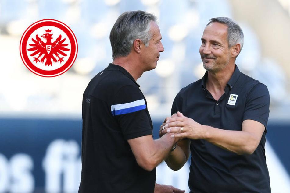 """""""Ergebnis ist ärgerlich"""": Eintracht-Trainer Hütter hadert mit 1:1 gegen Arminia"""