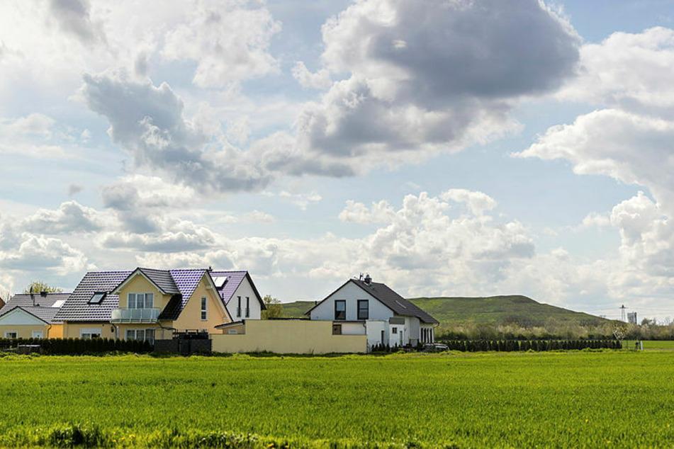Den Einwohnern von Seehausen wurde eine grüne Oase auf der stillgelegten Deponie versprochen - nun drohen tausende Solarmodule.
