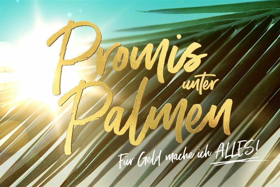 """Die Dreharbeiten für die zweite Staffel """"Promis unter Palmen"""" sind bereits gestartet."""