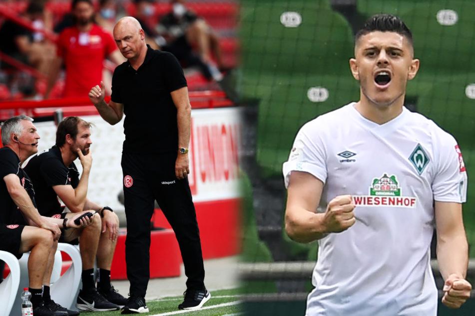 Bundesliga-Liveticker zum Nachlesen: Werder in Relegation, Düsseldorf abgestiegen!