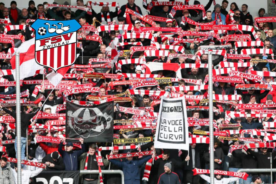 Sie kommen sogar aus München: Mitglieder-Boom beim FSV Zwickau!