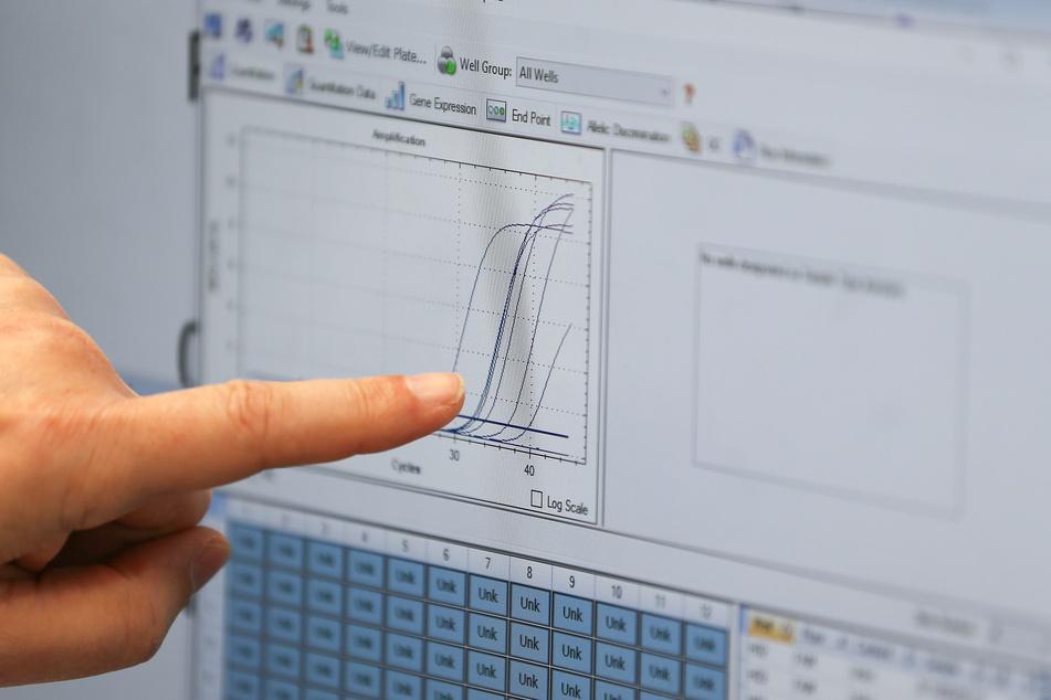Eine Analysekurve am Computer des Labors.
