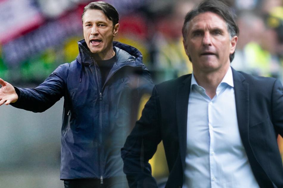 Bruno Labbadia (r.) wird neuer Trainer von Hertha BSC. Niko Kovac galt lange als der Wunschkandidat.