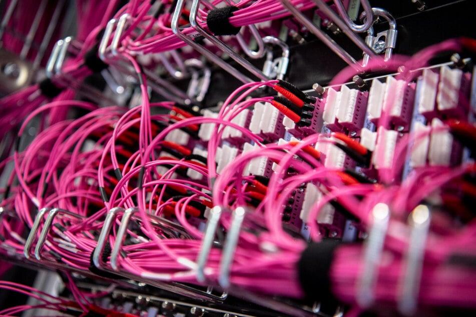 Glasfaserkabel stecken in einem Netzwerk-Switch. Beim Web-Dienstleister Fastly ist eine Störung aufgetreten.