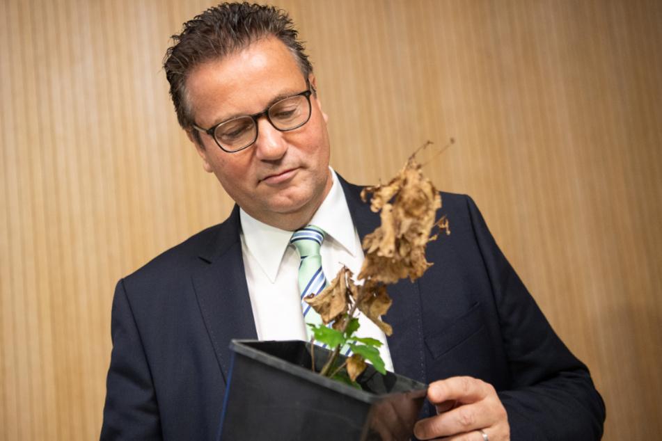 Baden-Württembergs Agrarminister Peter Hauk (59, CDU).