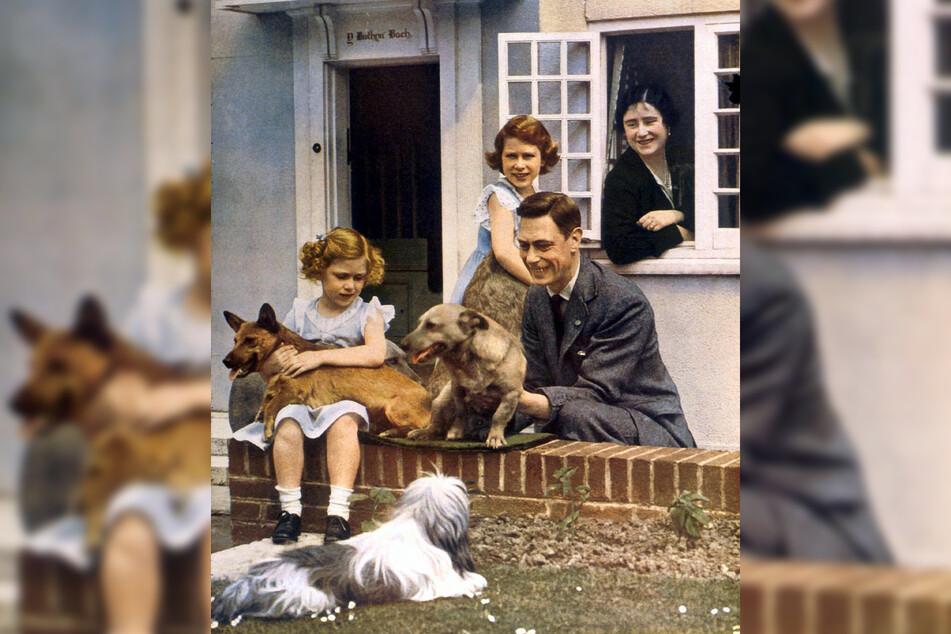 Hunde spielen seit ihrer Kindheit eine wichtige Rolle für die Königin (M.).