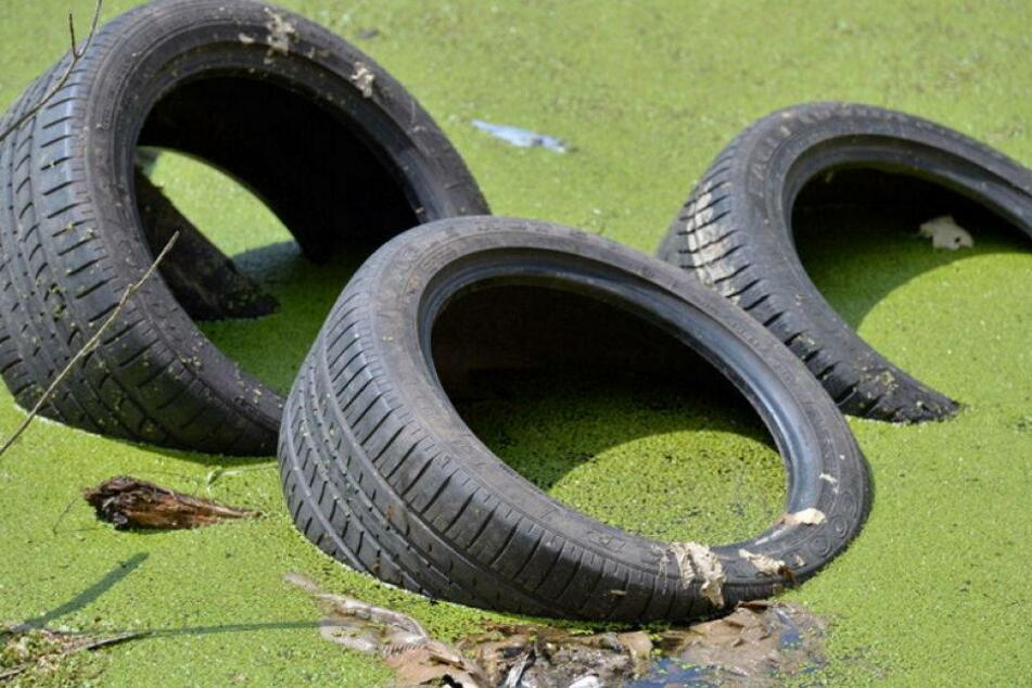 Pfui: Illegale Müllentsorgung kostet Sachsen gut eine Million Euro