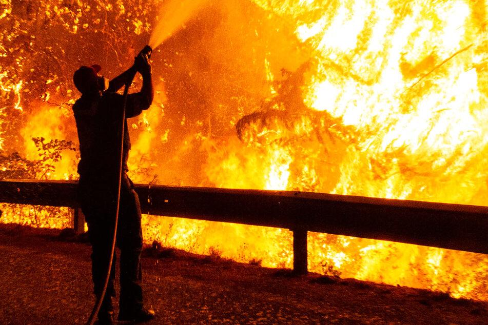 Das Foto zeigt lichterloh brennenden Wald bei Athen – die Waldbrände in Griechenland und der Türkei sind teils außer Kontrolle.