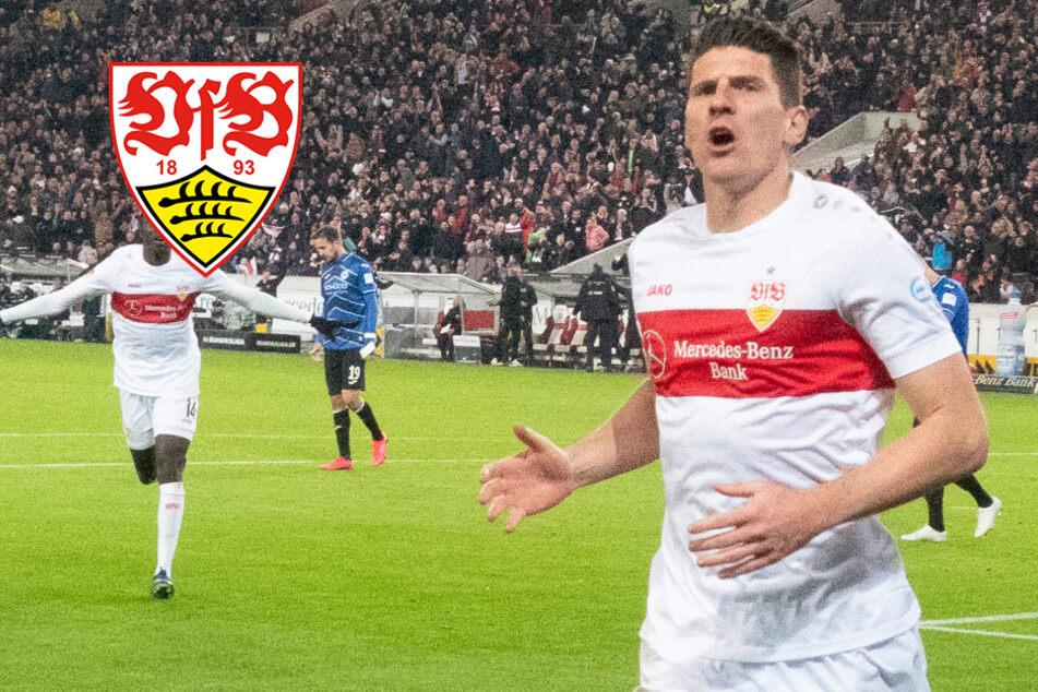 Hund von VfB-Star Mario Gomez muss jetzt beim Gassigehen mittrainieren
