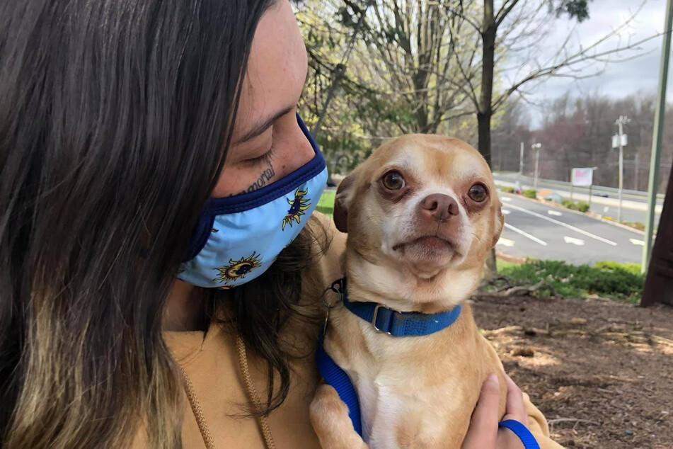 Tyfanee Fortuna meldete sich am Sonntag mit neuen Fotos von sich und Prancer auf Facebook. Noch ist sie den Chihuahua demnach nicht los.