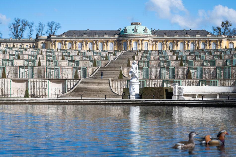 Schloss Sanssouci ist wieder für Besucher geöffnet.
