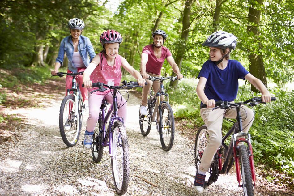 Eine geführte Radtour führt Euch heute zum Kloster Altzella.
