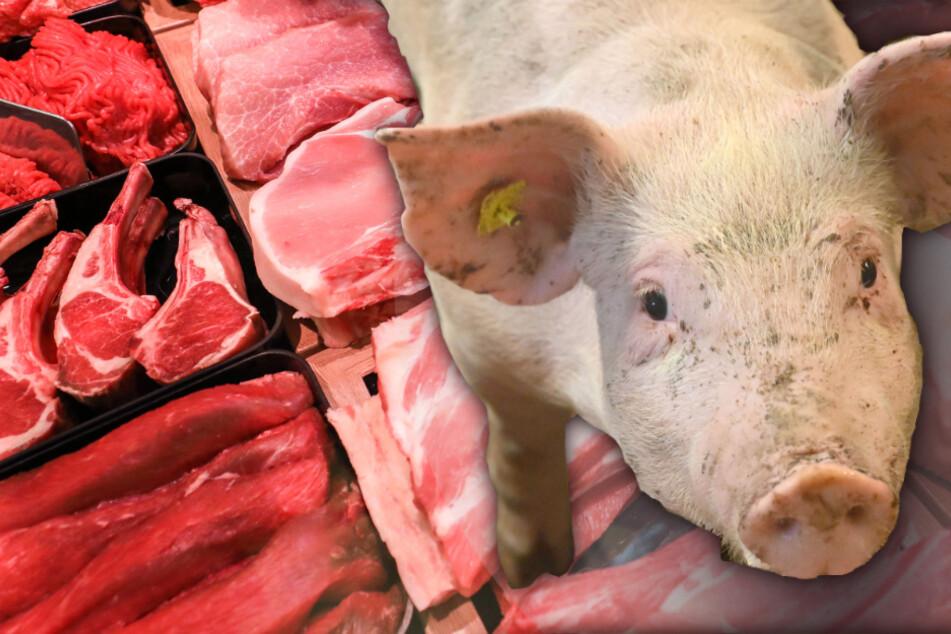Youtube-Kanal verrät: Das ist die Wahrheit über Fleisch