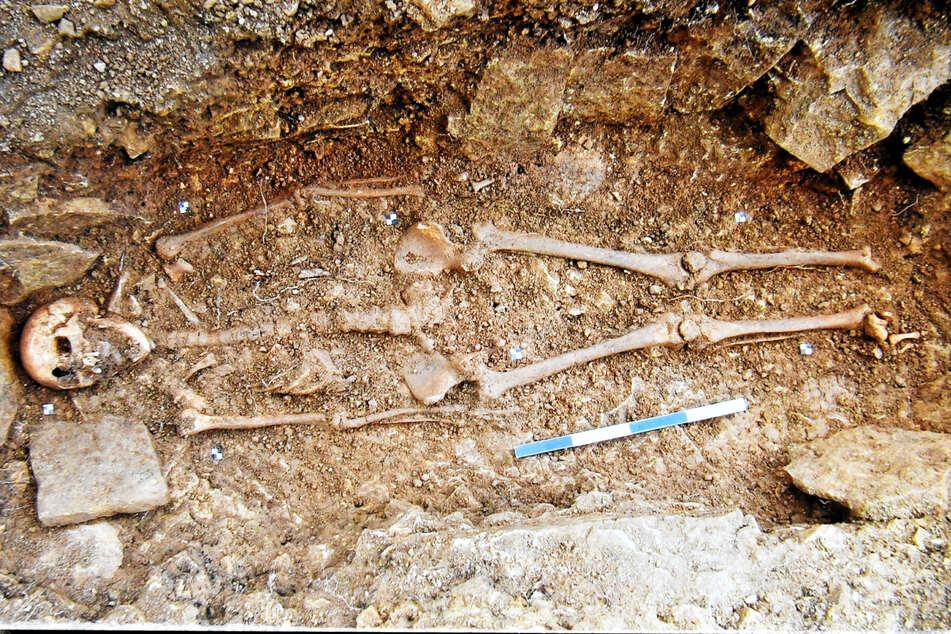 Fast schon makaber: Dieses Skelett liegt direkt unterm Esstisch des Rentners.