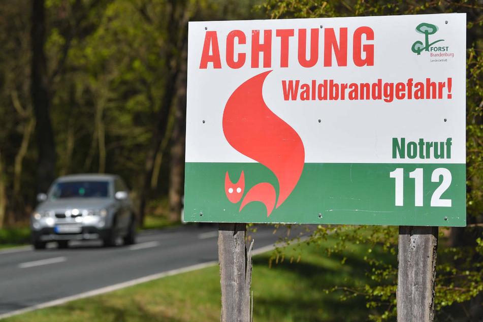 An einer Landstraße steht ein Warnschild im Wald. In Brandenburg steigt mit zunehmenden Temperaturen wieder die Waldbrandgefahr.