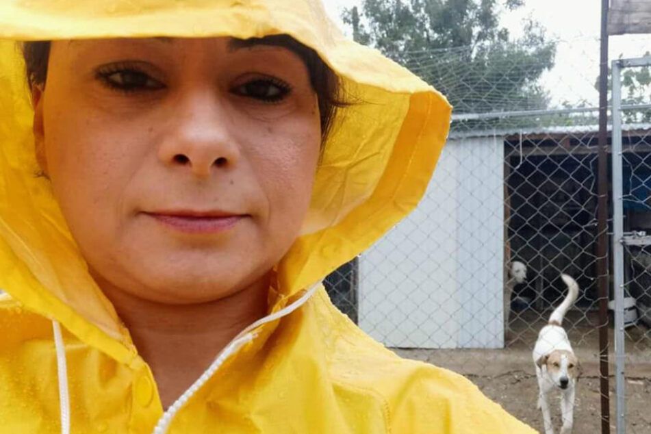 DAR-Gründerin Ermioni kämpft derzeit um den Wiederaufbau ihres Tierheims.