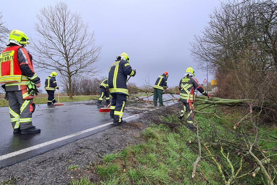 Ein Baum war auf die B2 bei Krostitz gestürzt und musste von der Feuerwehr entfernt werden.