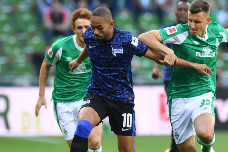 Werder Josh Sargent (l.) und Maximilian Eggestein (r.) versuchen Herthas Torschützen Matheus Cunha zu stoppen.