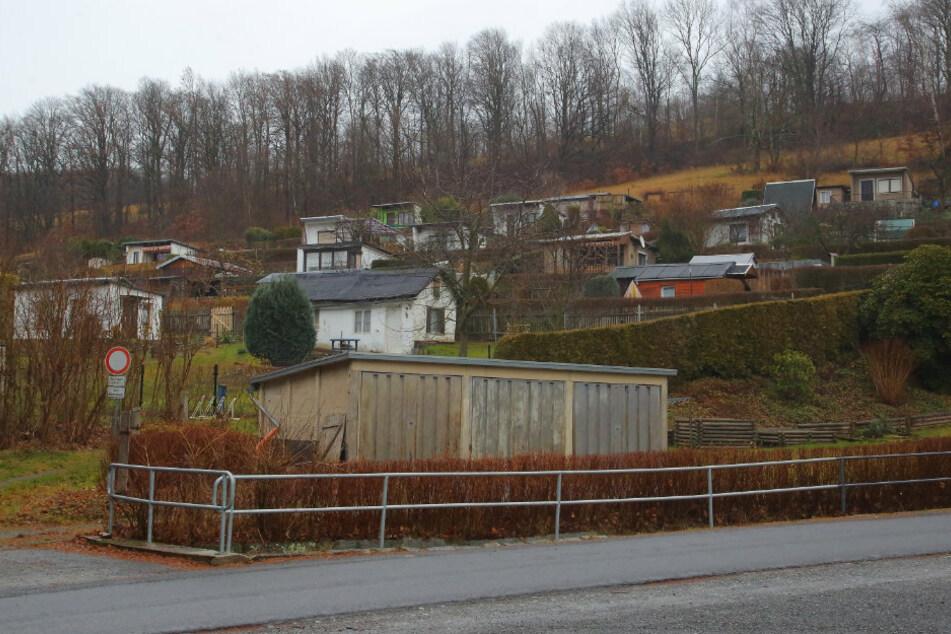 """Die Kleingartensparte zählte laut Amt nicht zum """"Quarantäne-Standort""""."""
