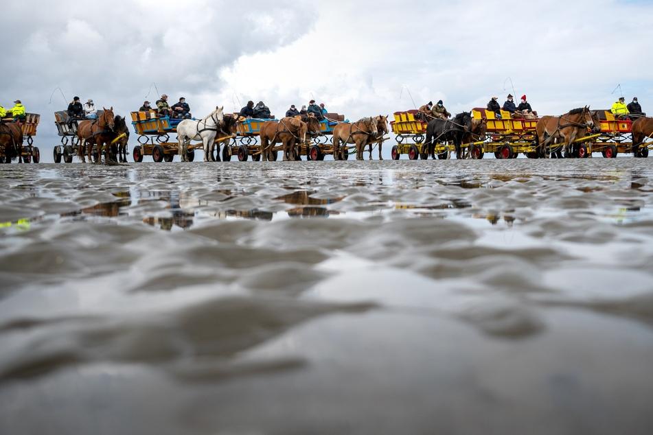 Die Bewohner der Nordseeinsel Neuwerk und die Wattwagenfahrer demonstrieren für den Erhalt des Weges über das Watt.