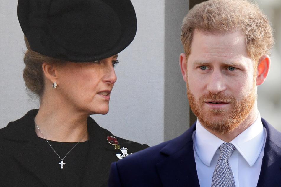 Familien-Krach mit Prinz Harry: Das sagt Sophie