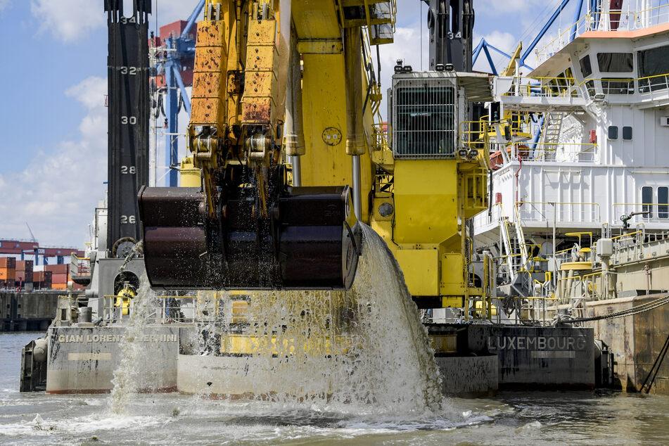 Ein Bagger holt bei Arbeiten zur Elbverteifung Schlick aus einem Hafenbecken.