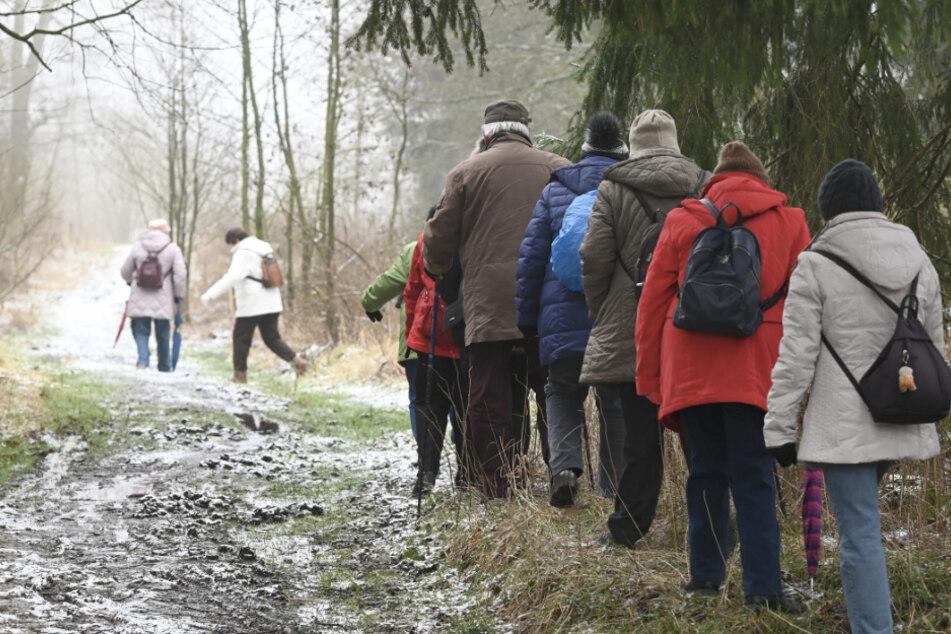 Eine Wandergruppe geht im Gänsemarsch.