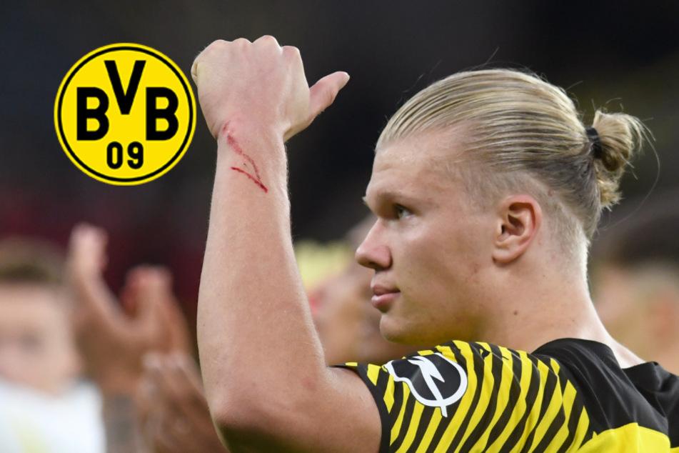 """""""Höchste Priorität"""": Macht Top-Klub bei Haaland-Transfer richtig ernst?"""
