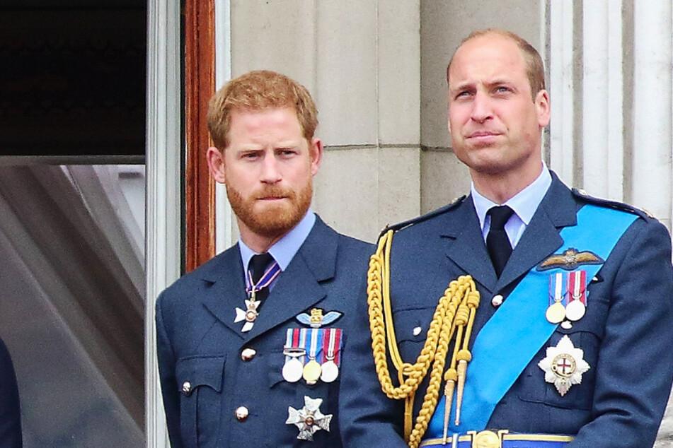 Prinzen Harry und William: Für ihre tote Mutter Diana (†) raufen sie sich zusammen!
