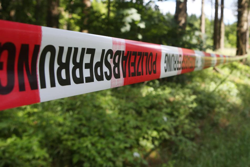 Grausiger Fund! Arbeiter entdeckt in seiner Bagger-Schaufel eine Baby-Leiche