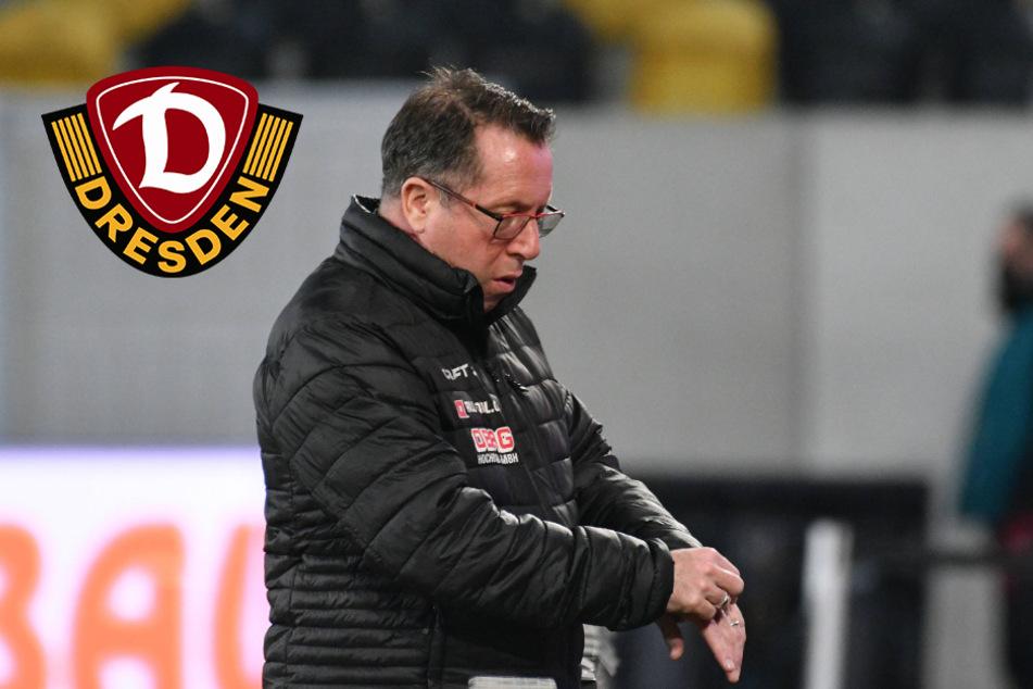 """Dynamo nach Unentschieden enttäuscht: """"Nicht gut genug für einen Sieg"""""""