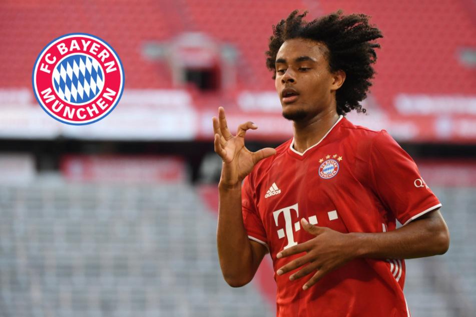 FC Bayern verleiht Zirkzee an Parma Calcio: Rummenigge verrät heikles Detail
