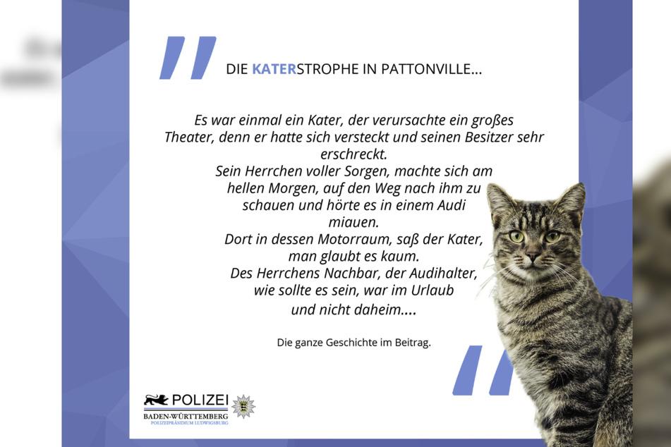 """Das Polizeipräsidium Ludwigsburg erzählt auf Facebook von einem kuriosen tierischen Einsatz. """"Die Katerstrophe in Pattonville"""" wird dabei in Gedichtform widergegeben. (Screenshot)"""