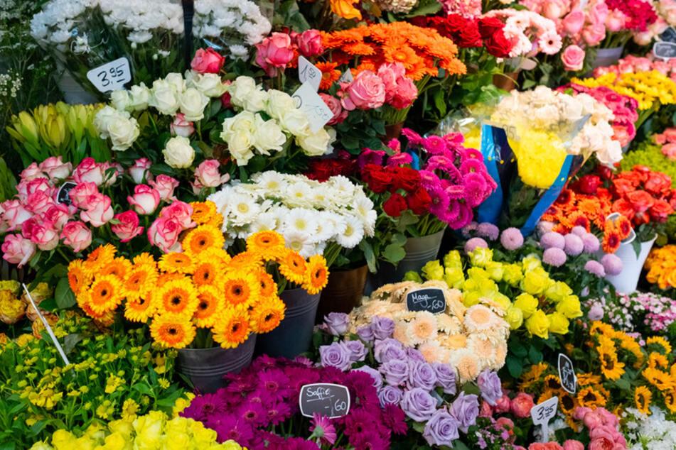 Supermärkte schnappen Blumenhändlern Geschäft weg! Floristen haben drastische Forderung