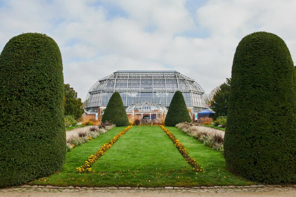 Der Botanische Garten öffnet doch noch nicht am Montag.