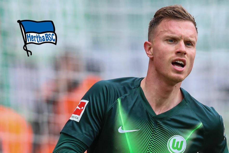 Hertha BSC mit Interesse an Wolfsburgs Yannick Gerhardt?