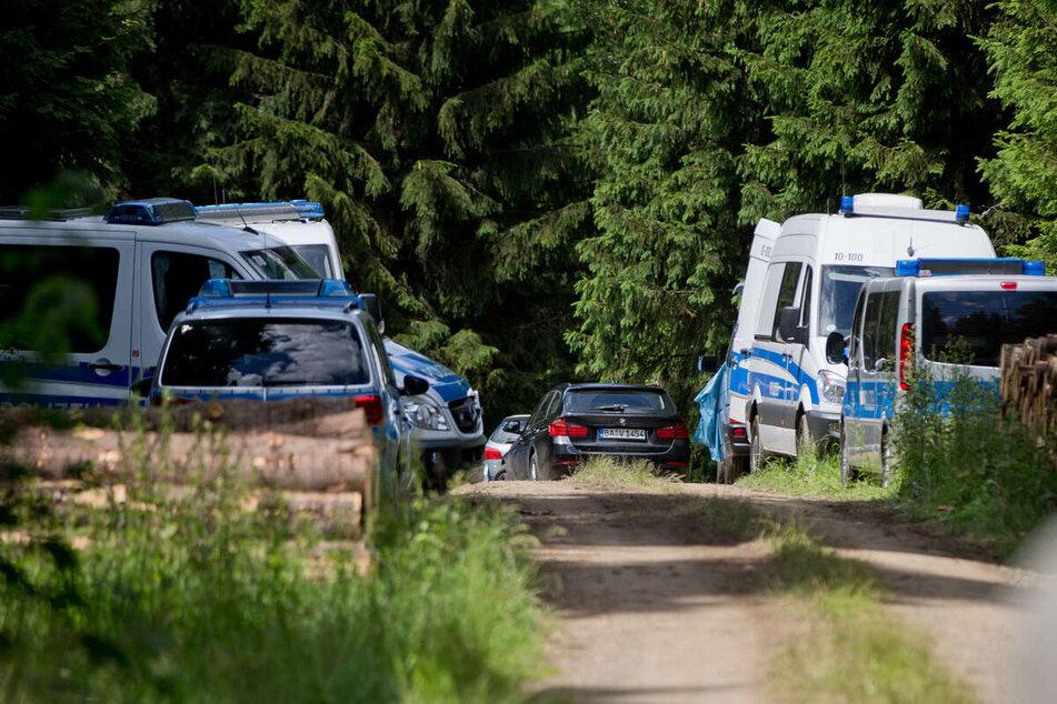 Im Dezember war in einem Waldstück im Kreis Lüneburg ein menschlicher Schädel gefunden worden. (Symbolfoto)