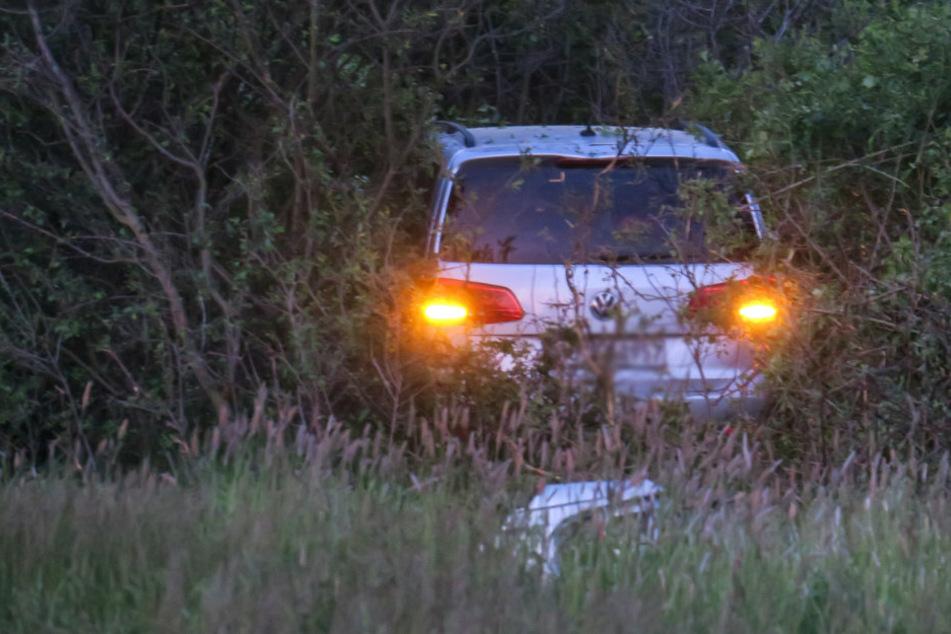 VW landet in A72-Ausfahrt im Gebüsch: Frau und Kind verletzt