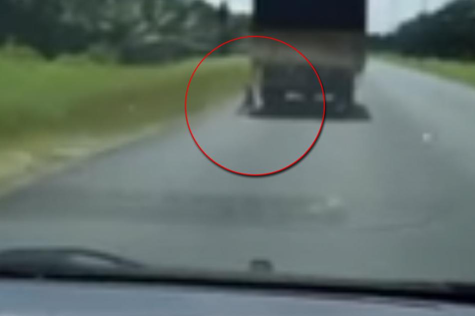 """An einem Umzugs-LKW wurde dieser arme Hund """"transportiert""""."""